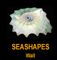 Wall SeaShapes